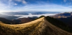 Carpathian Mountains Panoramic Landscape