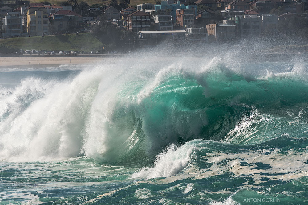 Bondi Beach cyan wave image