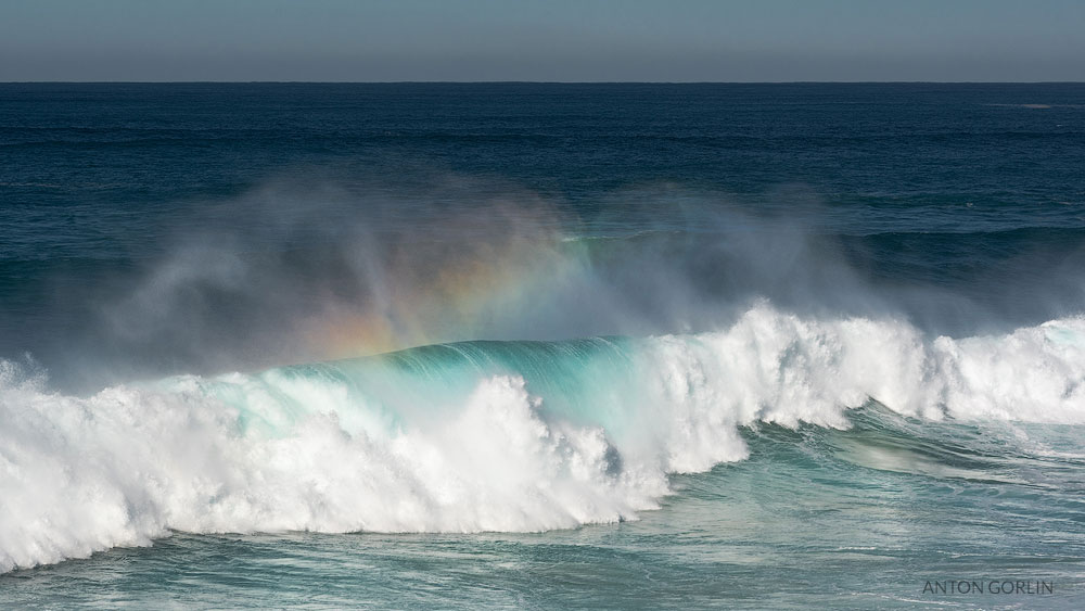 Tamarama Beach wave and rainbow