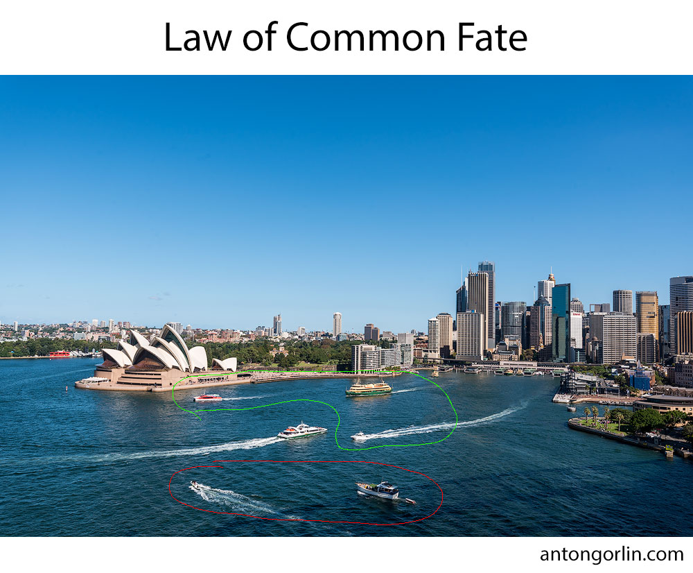 law of common fate