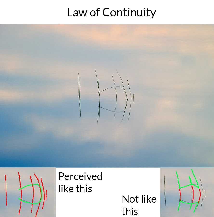 law of continuity