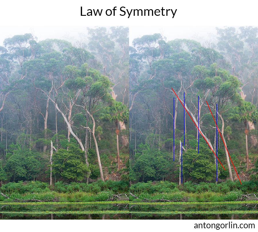 Gestalt Law of Symmetry